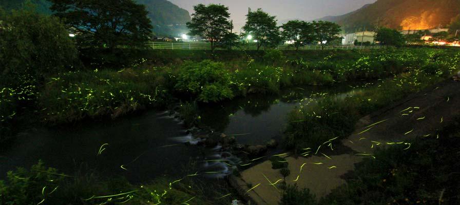 Hokubo Firefly Village