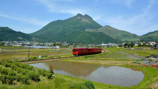 由布岳と水田風景