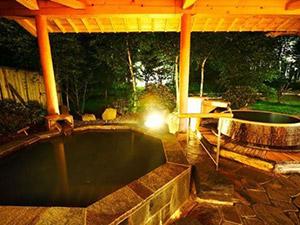 木曽御岳温泉 つたや季の宿 風里