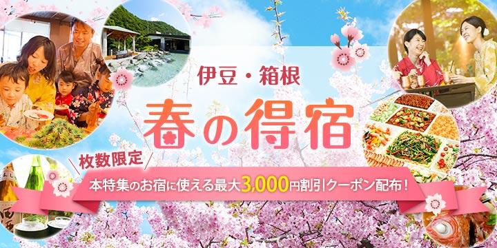 多彩なプランで『春咲き』気分♪早春の伊豆箱根旅