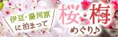 伊豆・湯河原 桜・梅めぐり