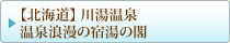 【北海道】 川湯温泉 温泉浪漫の宿湯の閣