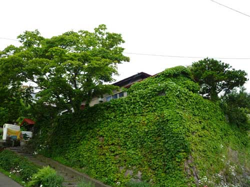 The Otarunai Backpackers' Hostel Morinoki