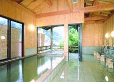 Hot Spring Bath 2
