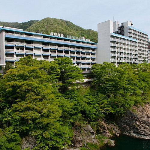 【特急列車付プラン】鬼怒川温泉ホテル(びゅうトラベルサービス提供)
