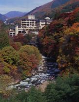 【特急列車付プラン】川浦温泉 山県館(びゅうトラベルサービス提供)