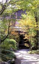 【特急列車付プラン】山のホテル 夢想園(JR九州旅行提供)
