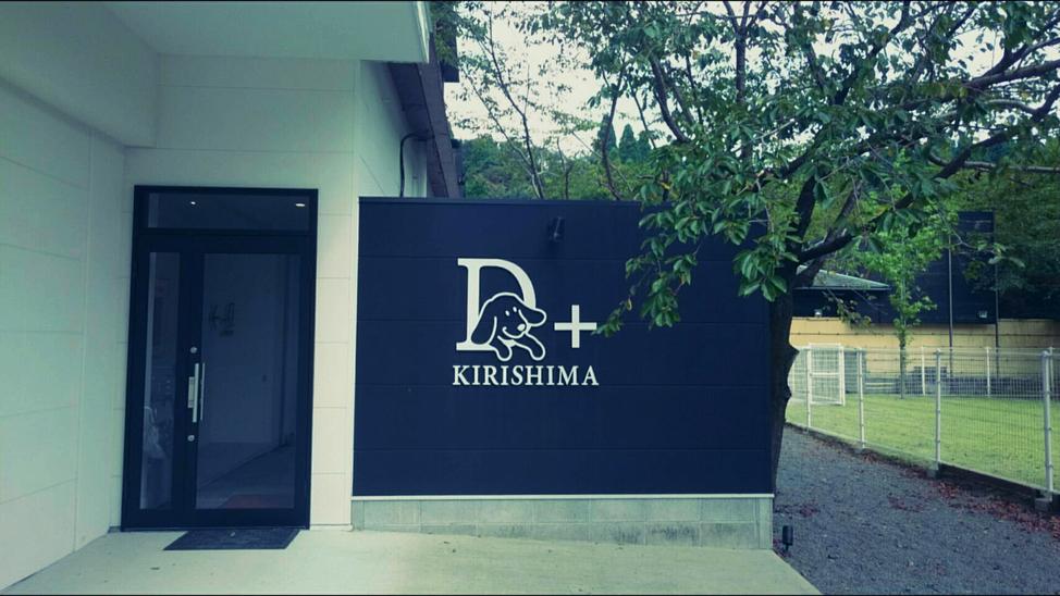 D+kirishima
