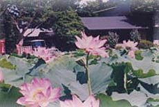 ほうとう旅館 富士山あすみ湖温泉