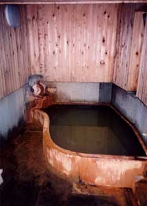 Natural Hot-spring Bath