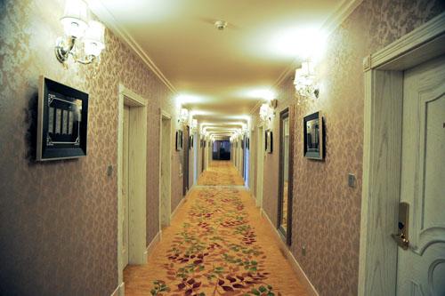 客房采用欧式风格装修,豪华水晶吊灯及纯白色的欧式家具配以广西少数