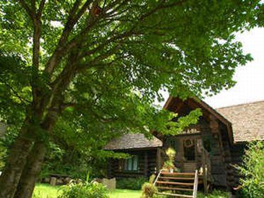 森遊び体験ができる宿 ログペンション森の散歩