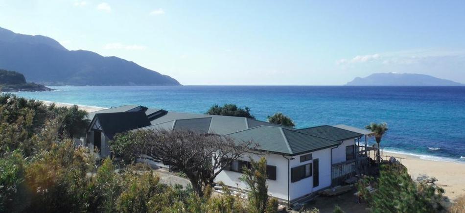 海亀のくる宿 マリンブルー屋久島