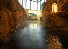 Hot Spring Bath 1