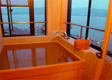 Guest Room's Panoramic Bath