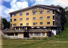 幕岩温泉 ビワ池ホテル