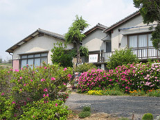 民宿 南風荘