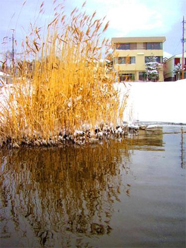 山中湖レイクサイドイン 富士波荘