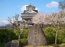 Kaminoyama Castle in Spring-image