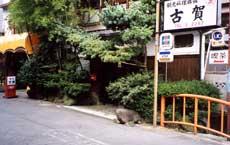 料亭古賀旅館