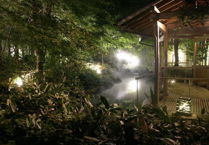 天城湯ヶ島 湯宿 嵯峨沢館 設備・アメニティ・基本情報