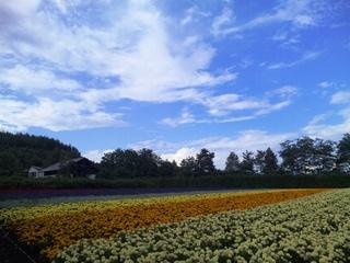 2011.8.21 Farm Tomita 2