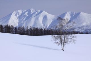 冬の富良野・美瑛 1