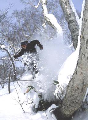 Ski Plan