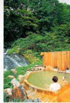 Enjoy Hot Springs! Breakfast Plan