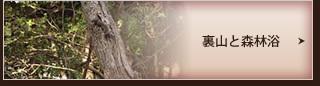裏山と森林浴