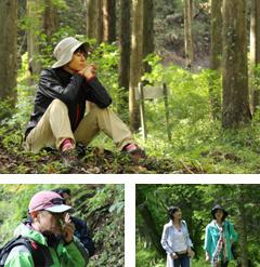 「ノンノの森」で癒される…森林セラピーを体験してみませんか?