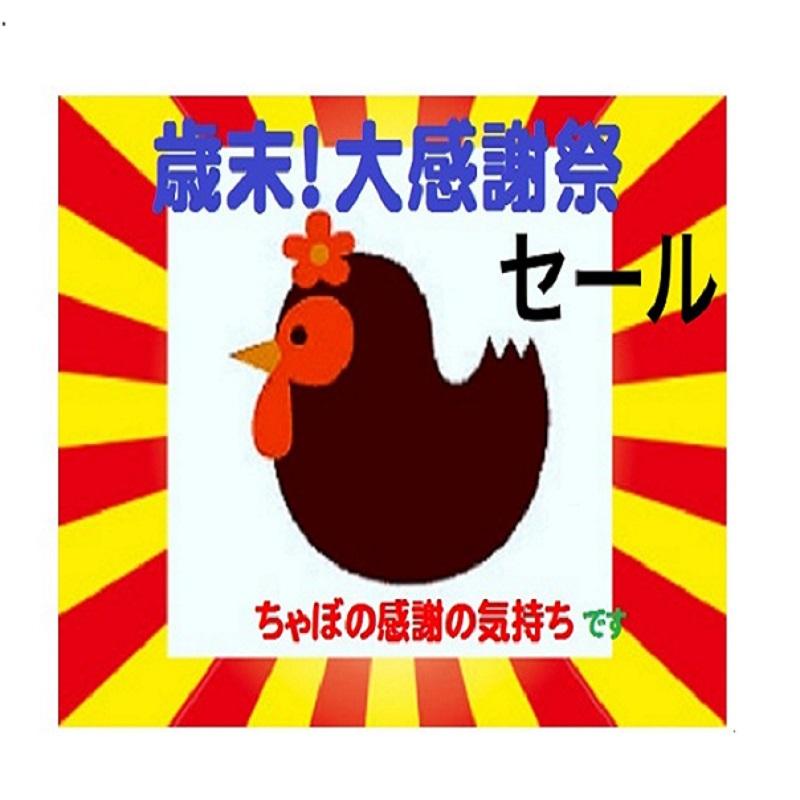 【楽天】【歳末大感謝祭】禁煙ルーム・うれしい朝食サービス付♪(最終チェックインは24時まで)