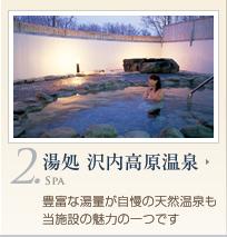 湯処 沢内高原温泉