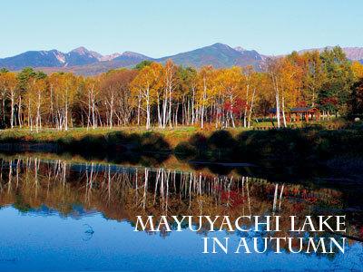 秋のまるやち湖と八ヶ岳