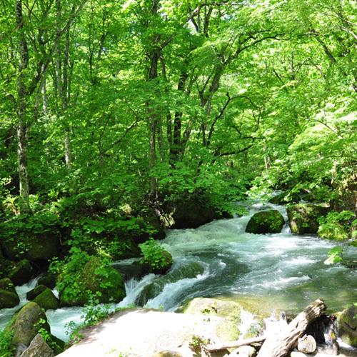 十和田湖畔温泉 十和田湖山荘 関連画像 4枚目 楽天トラベル提供