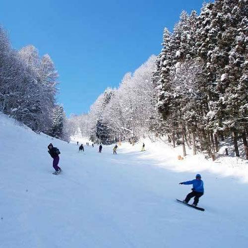 白馬スキーシーズン【お食事無し】ゲレンデまで約10分!〜HAKUBA VALLEY〜【お先でスノ。】