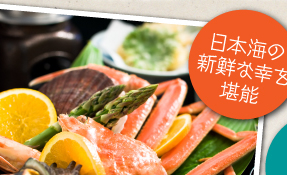日本海の新鮮な幸を堪能