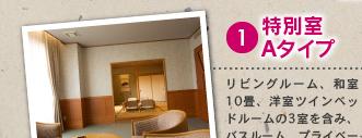 1 特別室Aタイプ