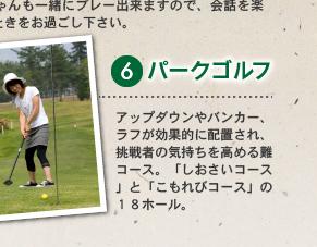 6 パークゴルフ