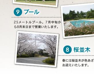 9 プール 8 桜並木