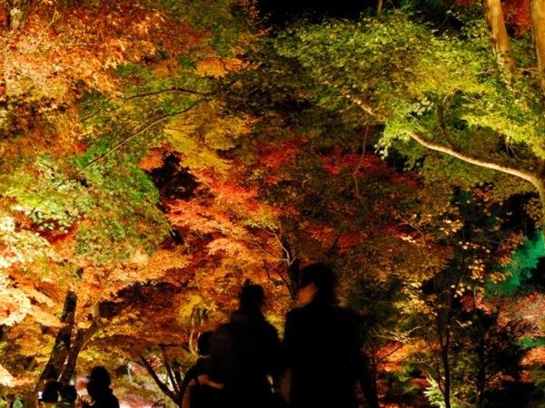 行こうよ!京都へ♪おトクな早割30プラン[素泊り]■さき楽■
