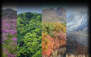 山麓の四季