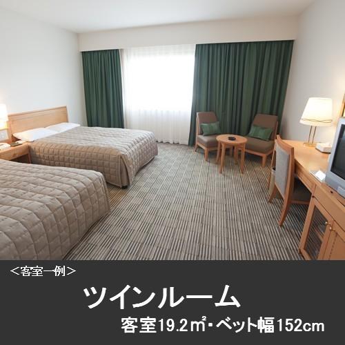 Standard Twin Room Lower Floor