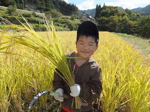 農家ペンション リトルパイン 関連画像 3枚目 楽天トラベル提供