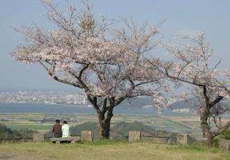 春の清水展望台