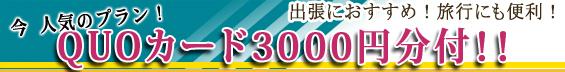 クオカード3000円分付