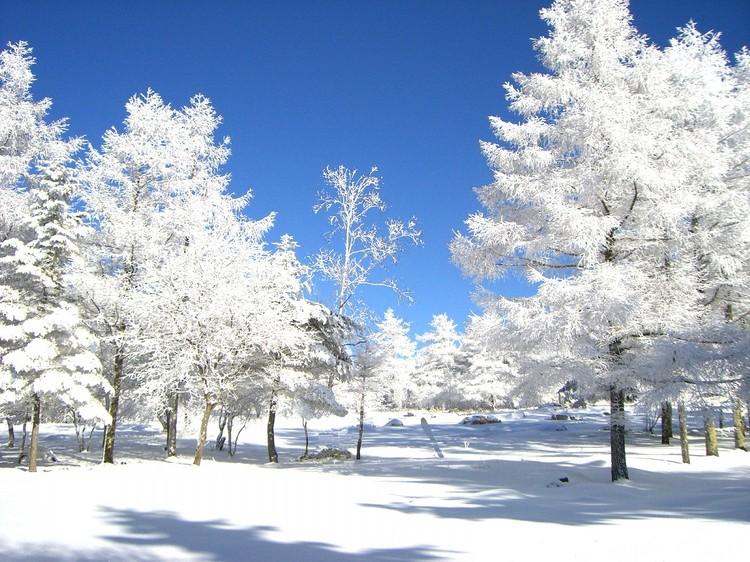 高アルカリ美肌の温泉 ヒュッテ霧ケ峰 関連画像 3枚目 楽天トラベル提供