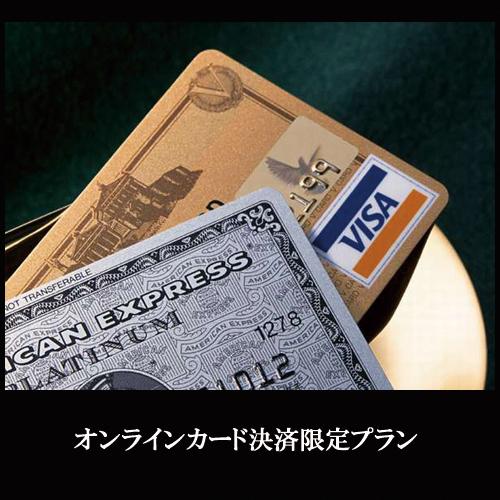 【オンラインカード決済がお得】★100円OFF★