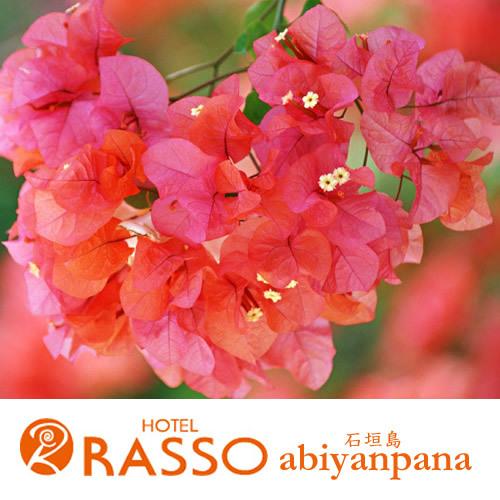 ホテルラッソ アビアンパナ石垣島 関連画像 2枚目 楽天トラベル提供