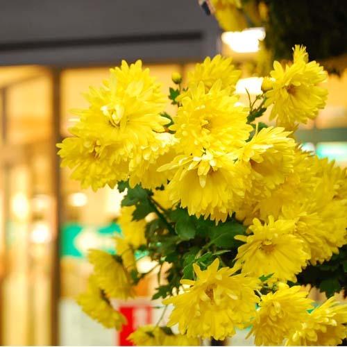 七城温泉ドーム 関連画像 4枚目 楽天トラベル提供